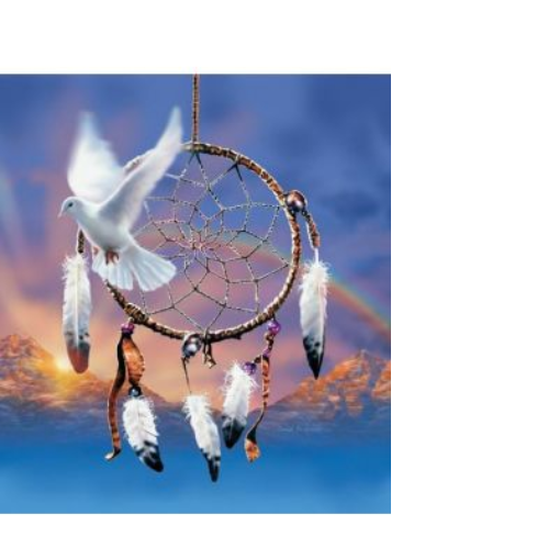Dreamcatcher Dove blank greeting card