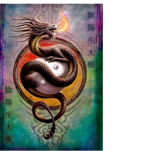 Ying Yang Protector Blank Greetings Card
